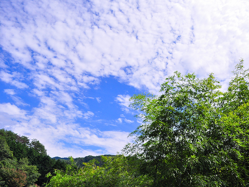 白川町の景色:山と空